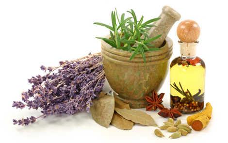 Las 3 mejores plantas para el Tratamiento Natural de Varices