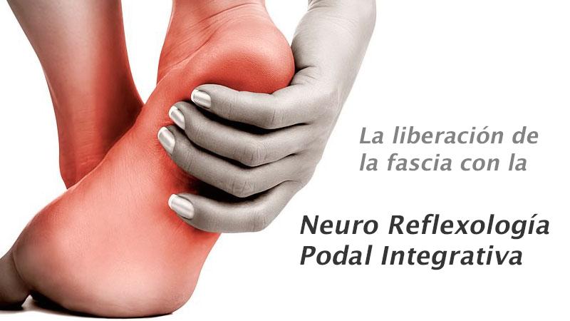 La liberación de la fascia con la Neuro Reflexología Podal Integrativa